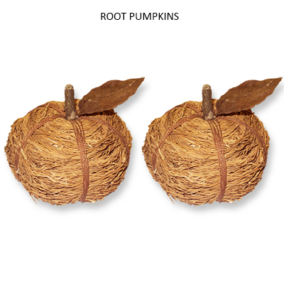 Root Pumpkin with LVS - Dried Handmade Flowers