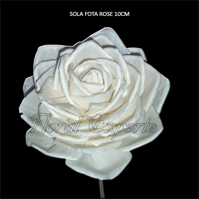 Sola Fota Rose 10cm Natural on Stick