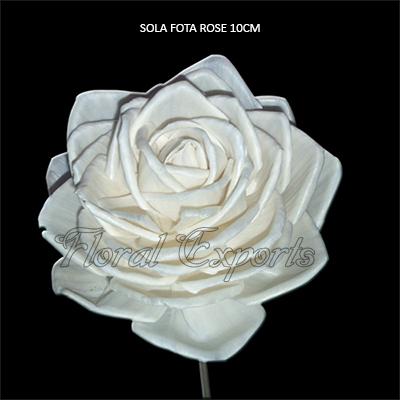 Sola Fota Rose 10cm Natural on Stick