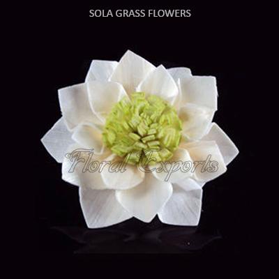 Sola Grass Flowers - Sola Grass Flowers Wholesale