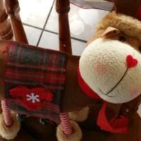 6WS: Reindeer
