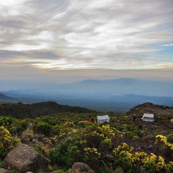 Kilimajaro Camp
