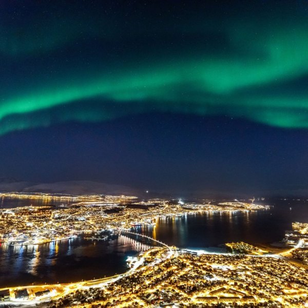 Drifters Guide Norway Whales Aurora Experience