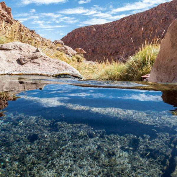 Drifters Guide Atacama Chile Experience Tour