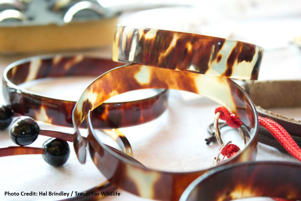 -turtle-shell-jewellery