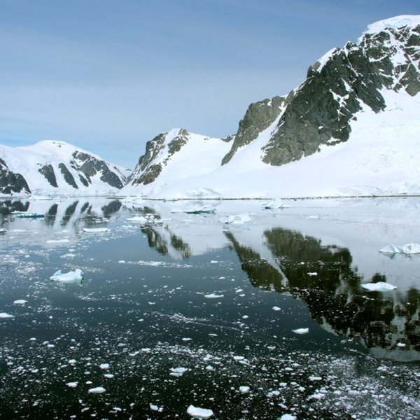 Drifters Guide Antarctica Experience Tour
