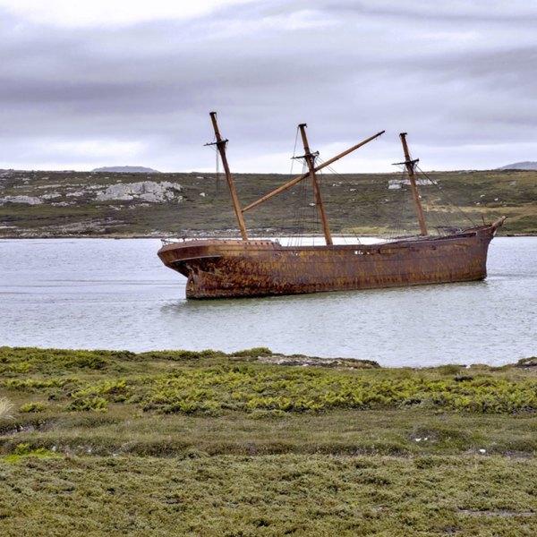 Drifters Guide Antarctica Falklands Georgia Experience