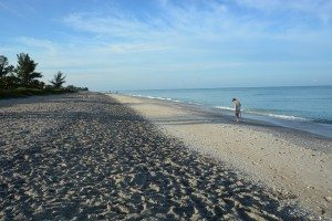 Manasota Key May 2014 091