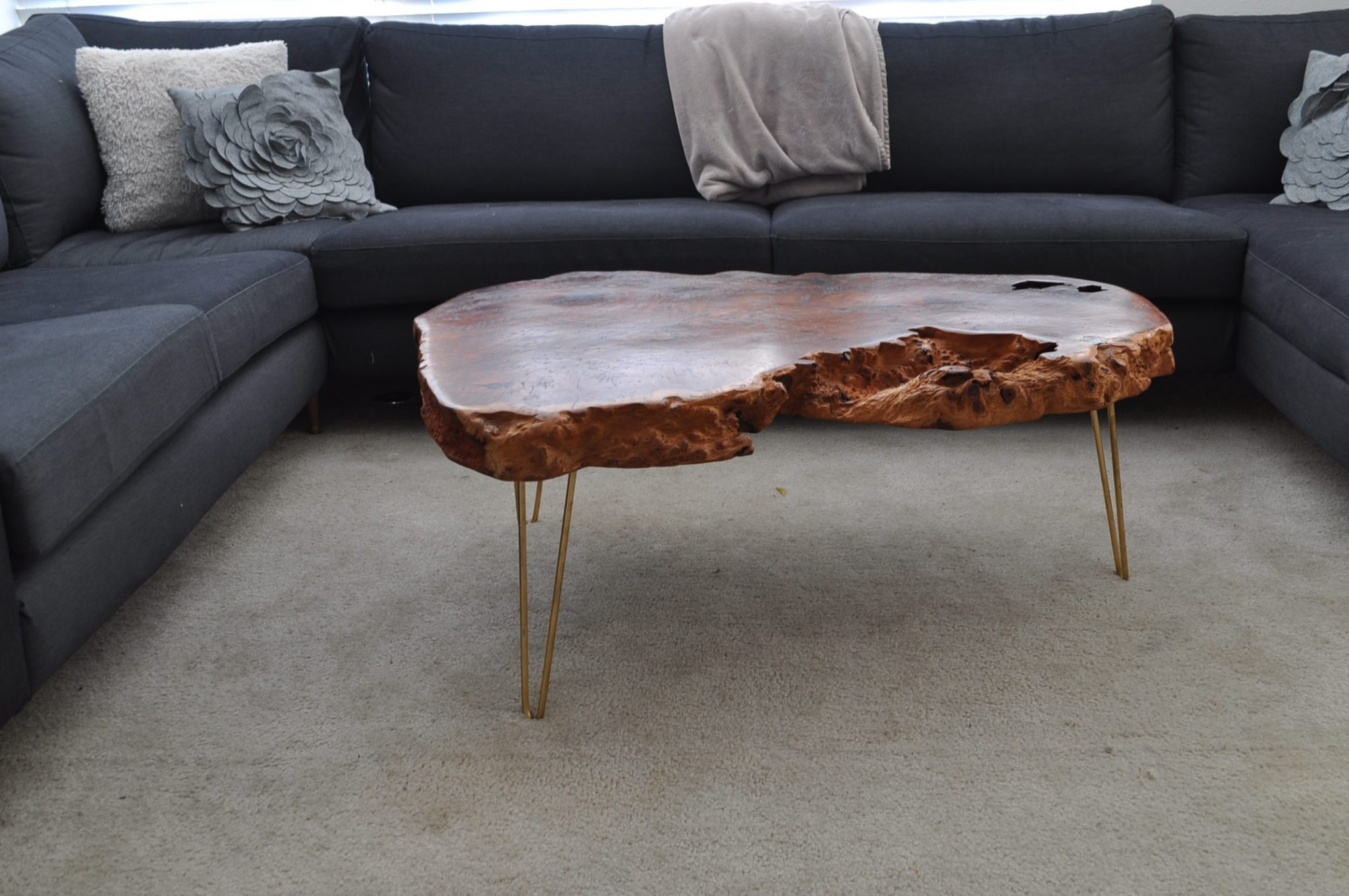 A redwood burl coffee table with hairpin legs