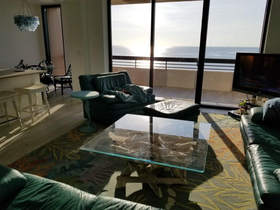 driftwood-coffee-glass-table