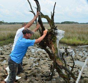 driftwood island 041