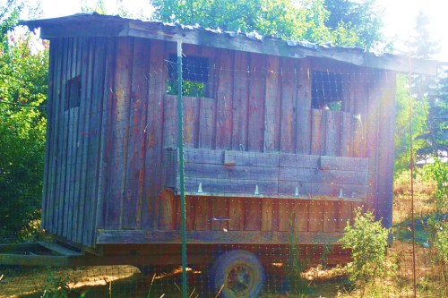 Trailer for sale or rent chickens for sale for fifty cents