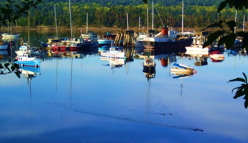 All is calm, all is not right Dog Patch, the Ladysmith water squatter's community