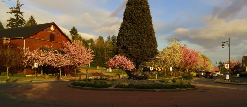 Spring morning light at the roundabout at the foot of the main street in Ladysmith