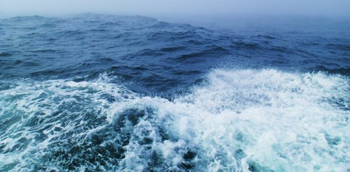 The swells came all ways. Cape Caution shuffle. Photographs of sea conditions invariably appear much lower than reality.