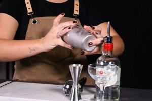 daiquiri shaker