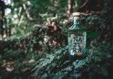 Naturæ-Gin