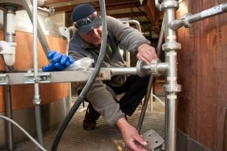 Pigeon Head brewmaster