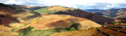 Terraced hillsides in Tuscany