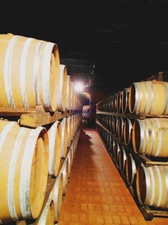 Barrels everywhere