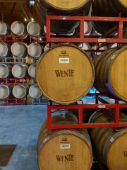 Touring and Tasting at Wente Vineyards in Livermore, California
