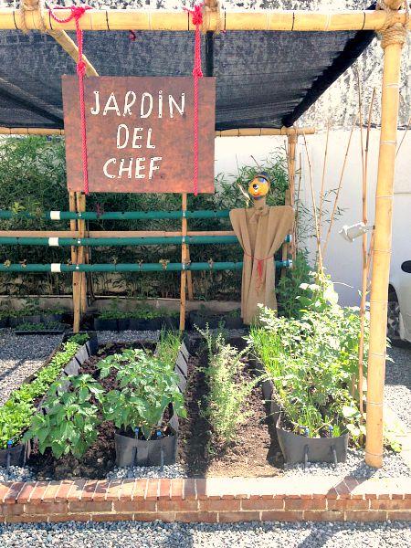 Jardin Scarecrow