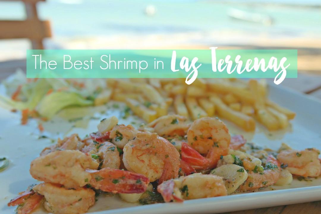 Best-Shrimp-in-Las-Terrenas