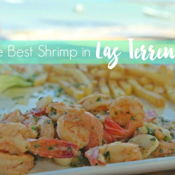 Best-Shrimp-in-Las-Terrenas