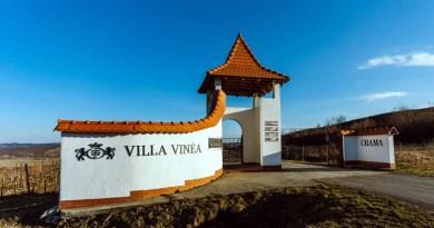 Villa Vinèa a înregistrat, în prima jumătate a anului 2019, o creştere de 45% a vânzărilor