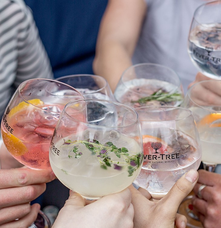 Fever-Tree Gin and Tonic Festival is coming to Sydney