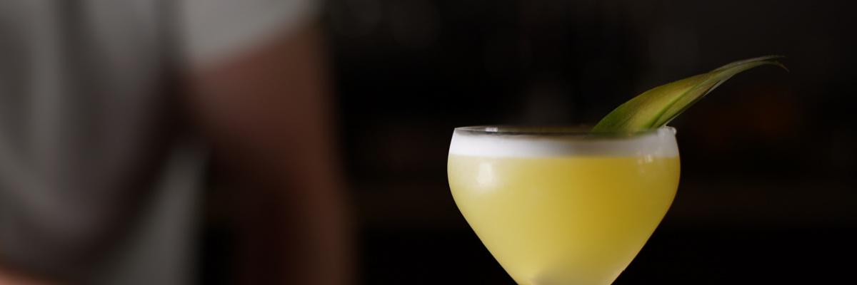 pisco cocktail