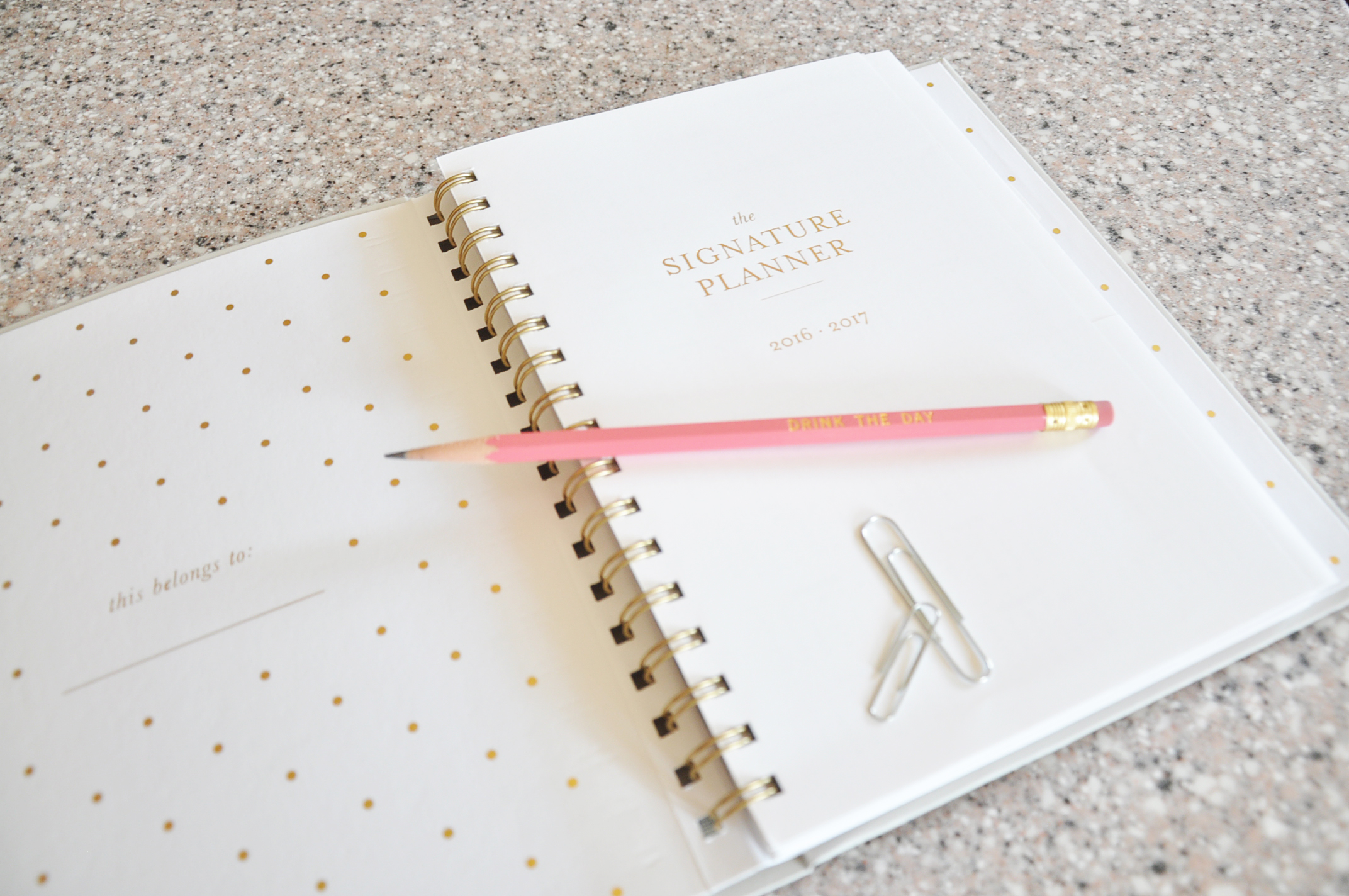 Sugar Paper Planner Review | Drink the Day