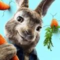 Peter Rabbit Drinking Game