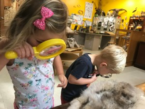 Austin Nature and Science Center hands-on exploration