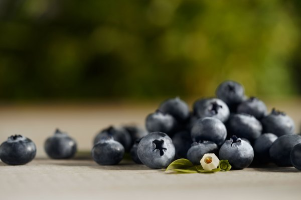 Blueberries Organic Blueberries Driscoll39s