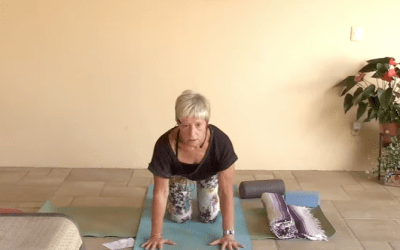 35min therapeutic yoga for the back (English)