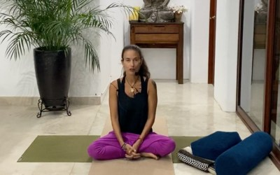 40min Pain Management with Therapeutic Yoga (English)
