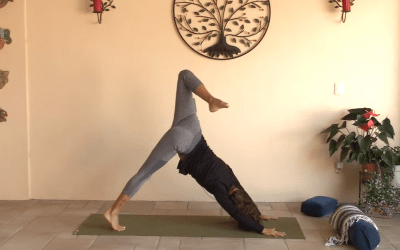 30min Hatha Yoga – all levels – (Bilingual)
