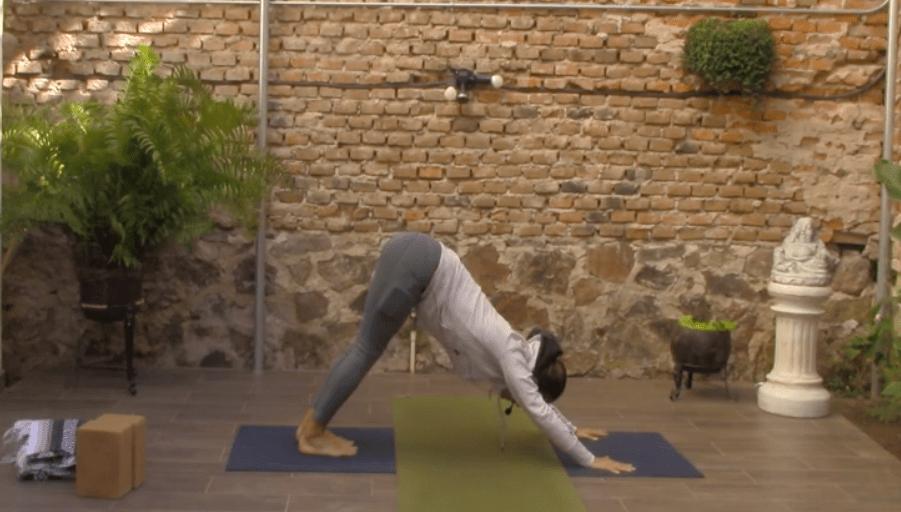 1hr Classic Hatha Yoga with Ana