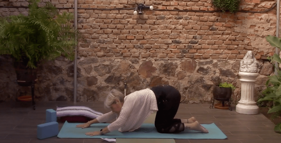 45min Therapeutic Yoga with a Focus on Posture