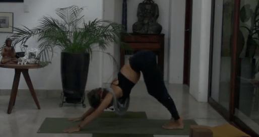 55min Vinyasa Flow Yoga (bilingual)