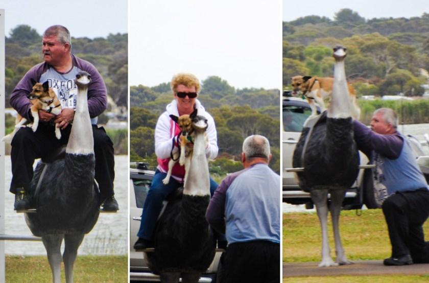Australiani in vacanza