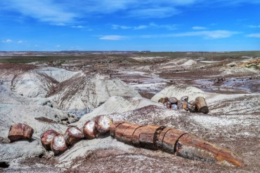 visitare Painted Desert e Petrified Forest