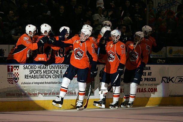 Looking Back at the Sound Tigers 2007-08 Season