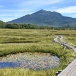 Oze wetland