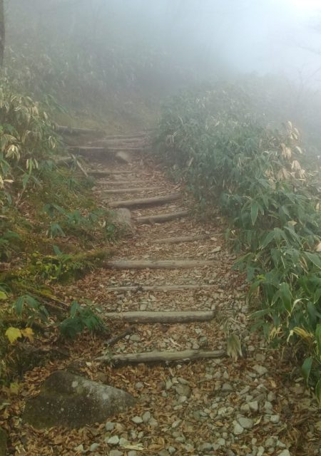 Path to the top of Mt. Ishizuchi