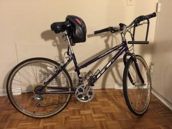 Female-framed Palomar bike w/helmet, u-lock and head light included!