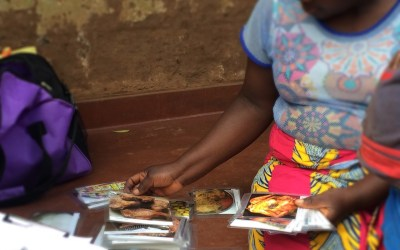 Innovative Methods for Measuring Drivers of Food Choice in Malawi