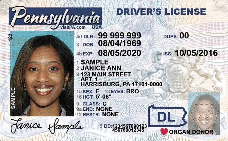 Pennsylvania Driver S License A Step