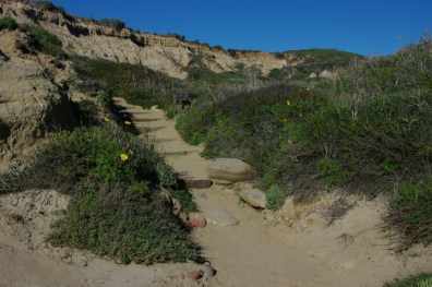A trail curving up into the bluffs.